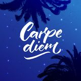 Carpe diem - latin phrase means seize the day, enjoy the moment. Inspiration quote brush calligraphy handwritten on Royalty Free Stock Image