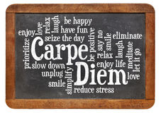 Carpe DIem word cloud Stock Image