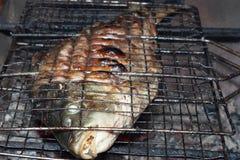 Carpe frite de poissons sur des grils de charbon de bois Photographie stock