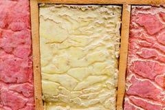 Carpenter ant nest pest glasswool isolation damage Stock Photos