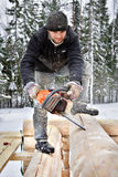 Carpenter builds wooden house made of logs, using chainsaw. Royalty Free Stock Photography