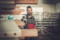 Carpenter doing his work in carpentry workshop. Stock Photography