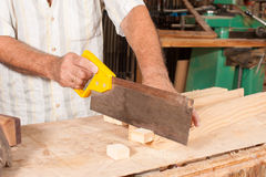 Carpenter with hand saw Stock Image