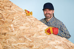 Carpenter holds a sheet plywood Royalty Free Stock Photos