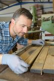 Carpenter lining up tongue and groove. Carpenter stock photos