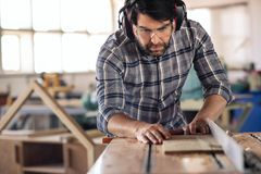 Carpenter making precision cuts to wood using a table saw. Focused carpenter wearing safety gear making precision cuts on a plank of wood using a table saw while stock image