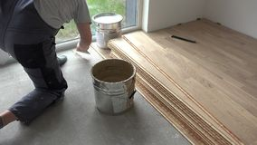 Carpenter man apply glue adhesive on concrete floor. Worker install wooden floor. Static shot stock video