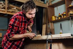 Carpenter man`s hand treats the tree, cuts the shavings. stock image