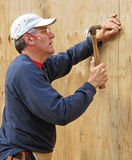 Carpenter nailing plywood Royalty Free Stock Images
