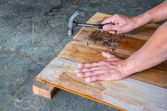 The Carpenter nailing wood board to make furniture Royalty Free Stock Image