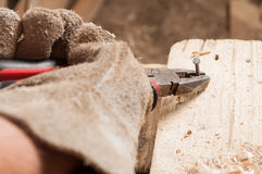 Carpenter pulling a nail out of wood Royalty Free Stock Photos