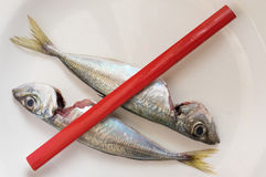 Carpenter´s pencil cross mackerels Stock Photos