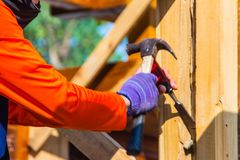Carpenter is using chisel and hammer to groove vertical line. Close up hands of carpenter with chisel and hammer during grooving w. Ork Stock Image