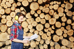 Carpenter on Woodworking Factory Stock Images
