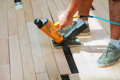 Carpenter worker installing wood parquet board. During flooring work with hammer Stock Photography