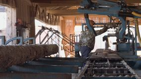 Carpenter working on industrial saw at sawmill, cutting timber stock video footage