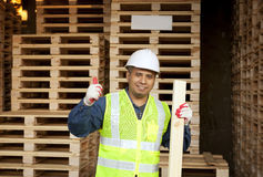 Carpenter on working Royalty Free Stock Photo