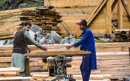 Carpenters cutting wood with professional chop saw. To make wooden huts at Fairy Meadows grassland royalty free stock image