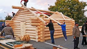 Carpenters lifting square timber rafters to the roof. Log cabin building. Carpenters lifting square timber rafters to the roof building timber frame structure royalty free stock image