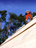Carpenters on a Wooden Roof. Two carpenter working on a steep wooden roof Royalty Free Stock Image