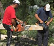 Carpentiere due fotografie stock libere da diritti