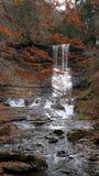 Carpentiere Falls Central NY Fotografie Stock