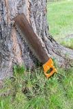 Carpentry tool near tree royalty free stock image