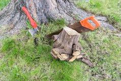 Carpentry tools near tree royalty free stock photography