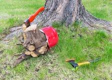 Carpentry tools near tree stock photography