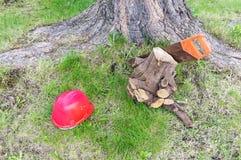 Carpentry tools near tree stock image