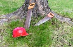 Carpentry tools near tree royalty free stock photo