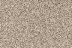 Carpet background pattern Stock Photography