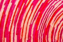 Carpet background Stock Photos
