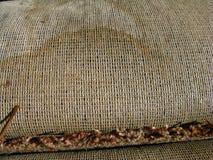 Carpet with Cat/dog  urine(pee)marks -7-3-10 Royalty Free Stock Photos
