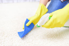 Carpet cleaning spray. Royalty Free Stock Images