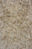 Carpet closeup. Can use like background Royalty Free Stock Photos