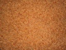 Carpet detail. Detailed photo of orange carpet Royalty Free Stock Photography