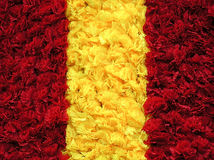 Carpet of flowers. Flower background. Three vertical rows Stock Photography