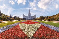 The carpet of flowers in front of Moscow State University stock photography