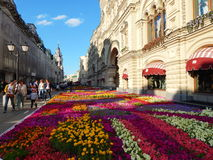 The carpet of flowers in front of  the State Department Store in Moscow. The carpet of flowers in front of the State Department Store in Moscow, Nikolskaya Royalty Free Stock Photos