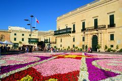 Carpet of Flowers in Valletta. Beautiful Potted flowers, arranged in the pattern of a Maltese tile in St George's Square for the largest infiorata in Malta Royalty Free Stock Image