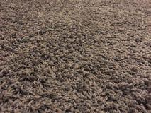 Carpet fur closeup with perspective view. Carpet fur with closeup and perspective view Stock Photo