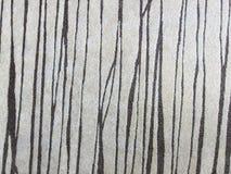 Carpet with irregular lines Stock Photo