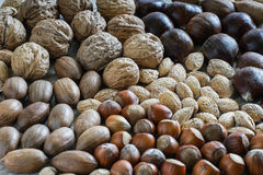 Carpet nuts Stock Photography