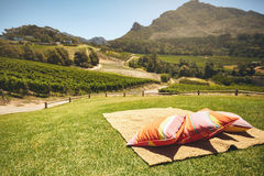 Carpet and pillows on hill with view of vineyard Royalty Free Stock Photo