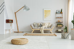 Carpet and rug. Big white carpet and brown rug in spacious living room stock photo
