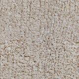 Carpet seamless texture Stock Images