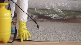 Carpet spray treatment,cleaning service or exterminator