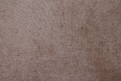 Carpet. The texture of the carpet Stock Photography