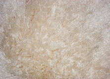 Carpet texture. White carpet texture Stock Photo